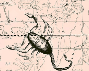 scorpius_constellation_uranografia